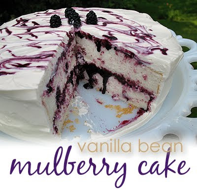 A photo of a vanilla bean mulberry cake with a slice taken out.