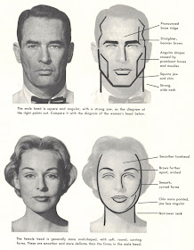 Illustration Art On The Difficulty Of Drawing Women S Faces