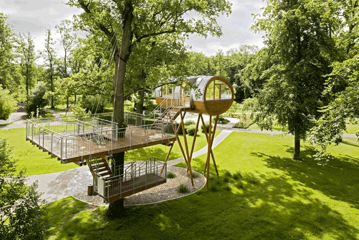world of living treehouse