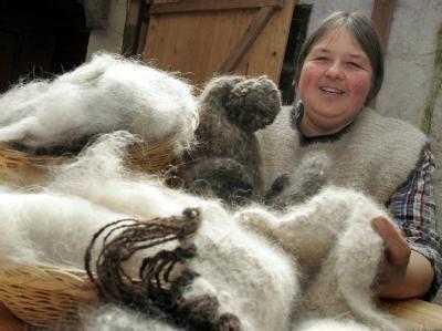 pet yarn chic
