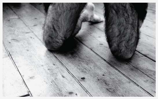Hairy by Robert Greene