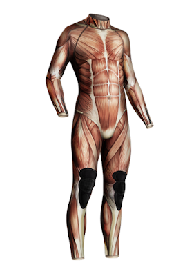 anatomical wetsuit - if it's hip, it's here