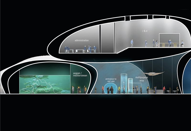 If It S Hip It S Here Archives The New Batumi Aquarium