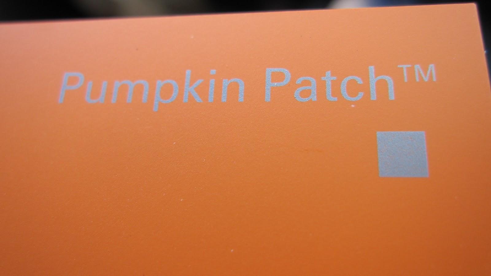 Paint Chip Pumpkins