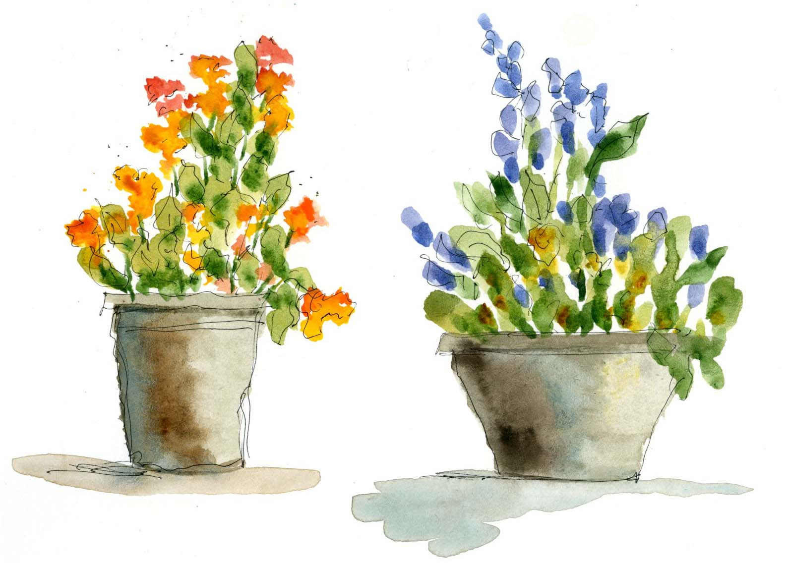 Fun Five Minute Watercolor Flowers To Paint And Easy Do
