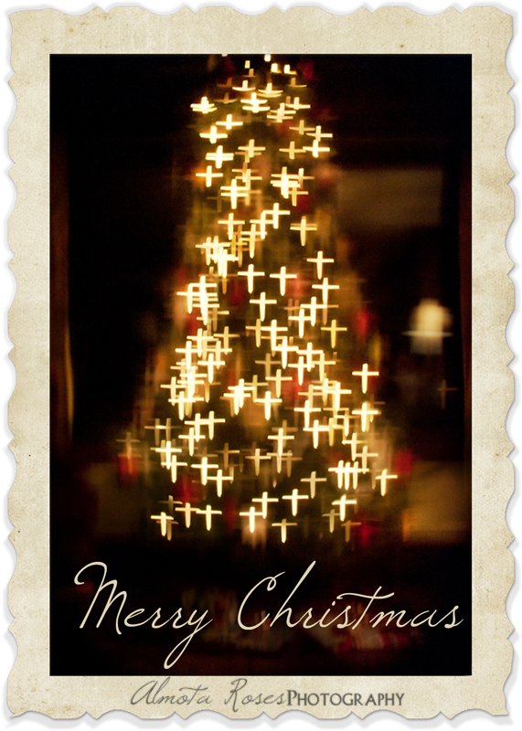 Merry Christmas From Our Home To Yours.Merry Christmas Almota Roses Photography