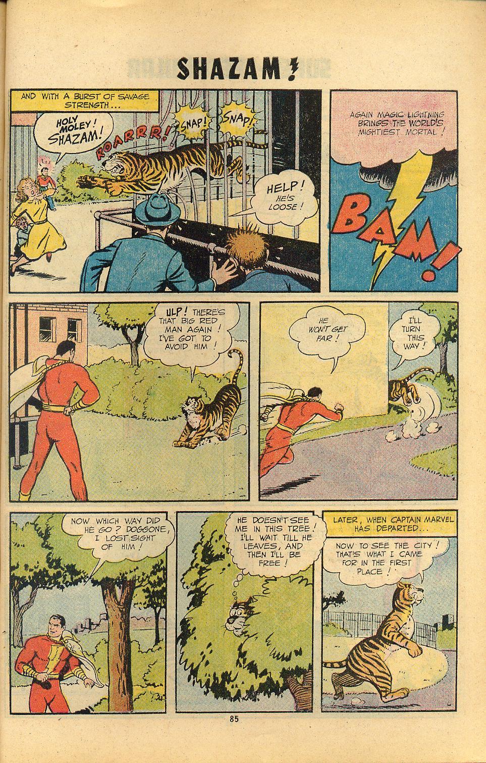 Read online Shazam! (1973) comic -  Issue #8 - 85