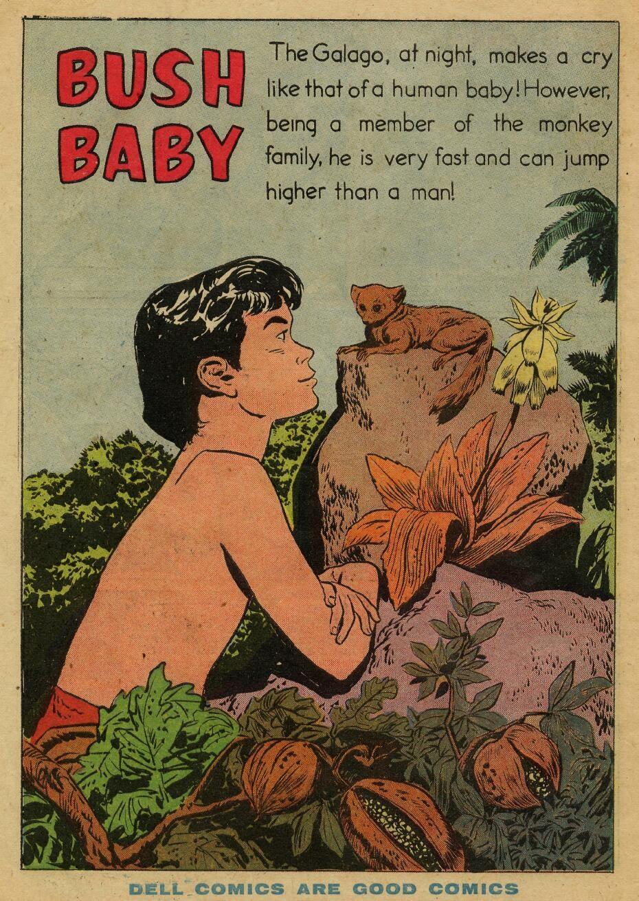 Tarzan (1948) issue 72 - Page 34