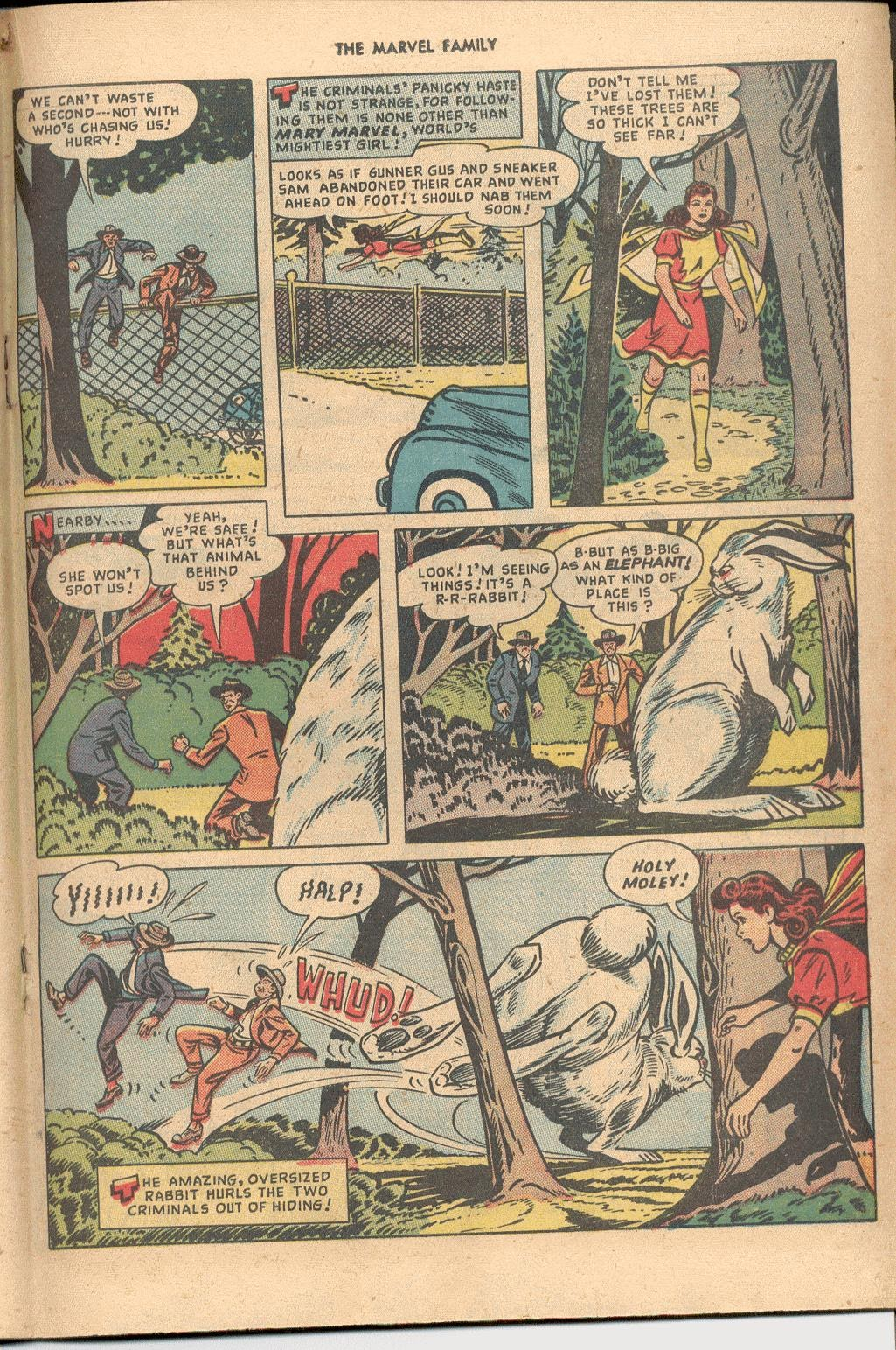 The Marvel Family issue 38 - Page 27
