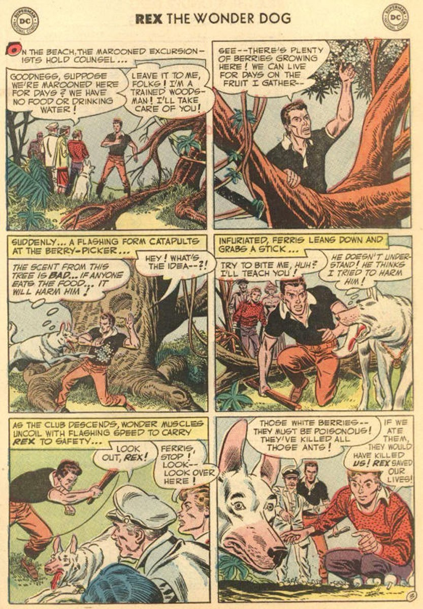 The Adventures of Rex the Wonder Dog issue 4 - Page 27