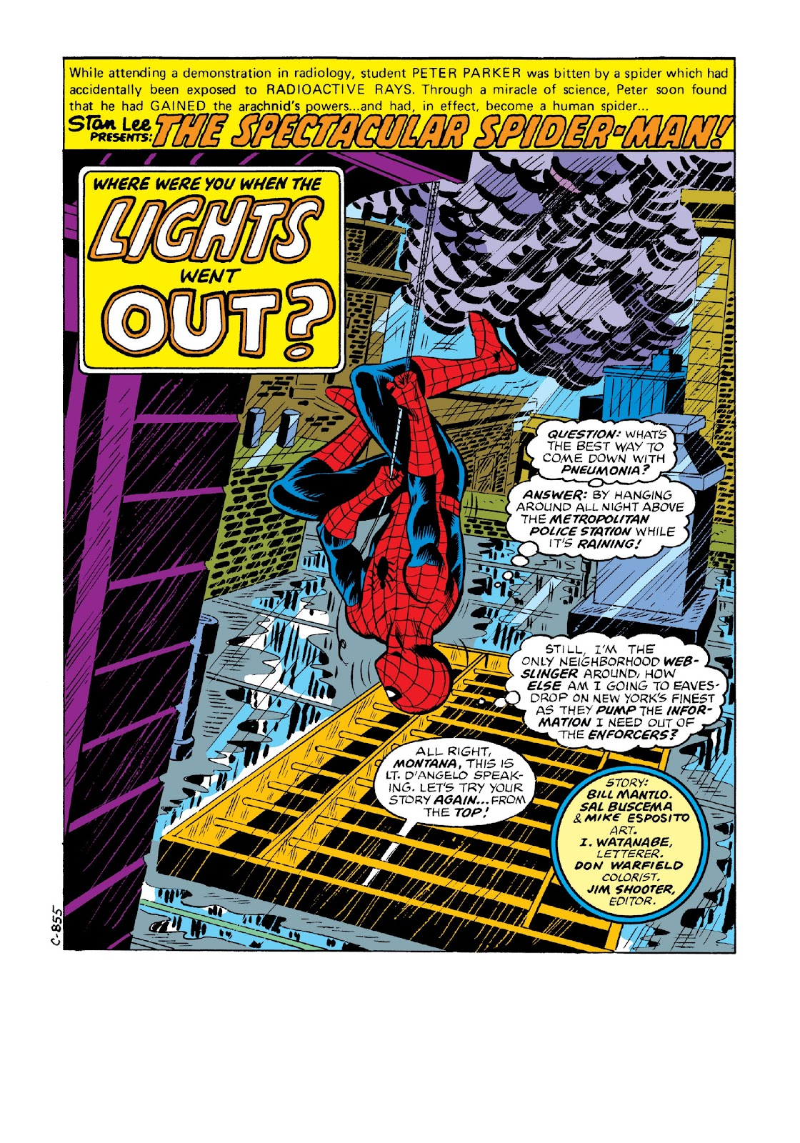 Read online Marvel Masterworks: The Spectacular Spider-Man comic -  Issue # TPB 2 (Part 1) - 82