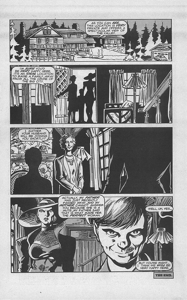 Femforce Issue #94 #94 - English 24