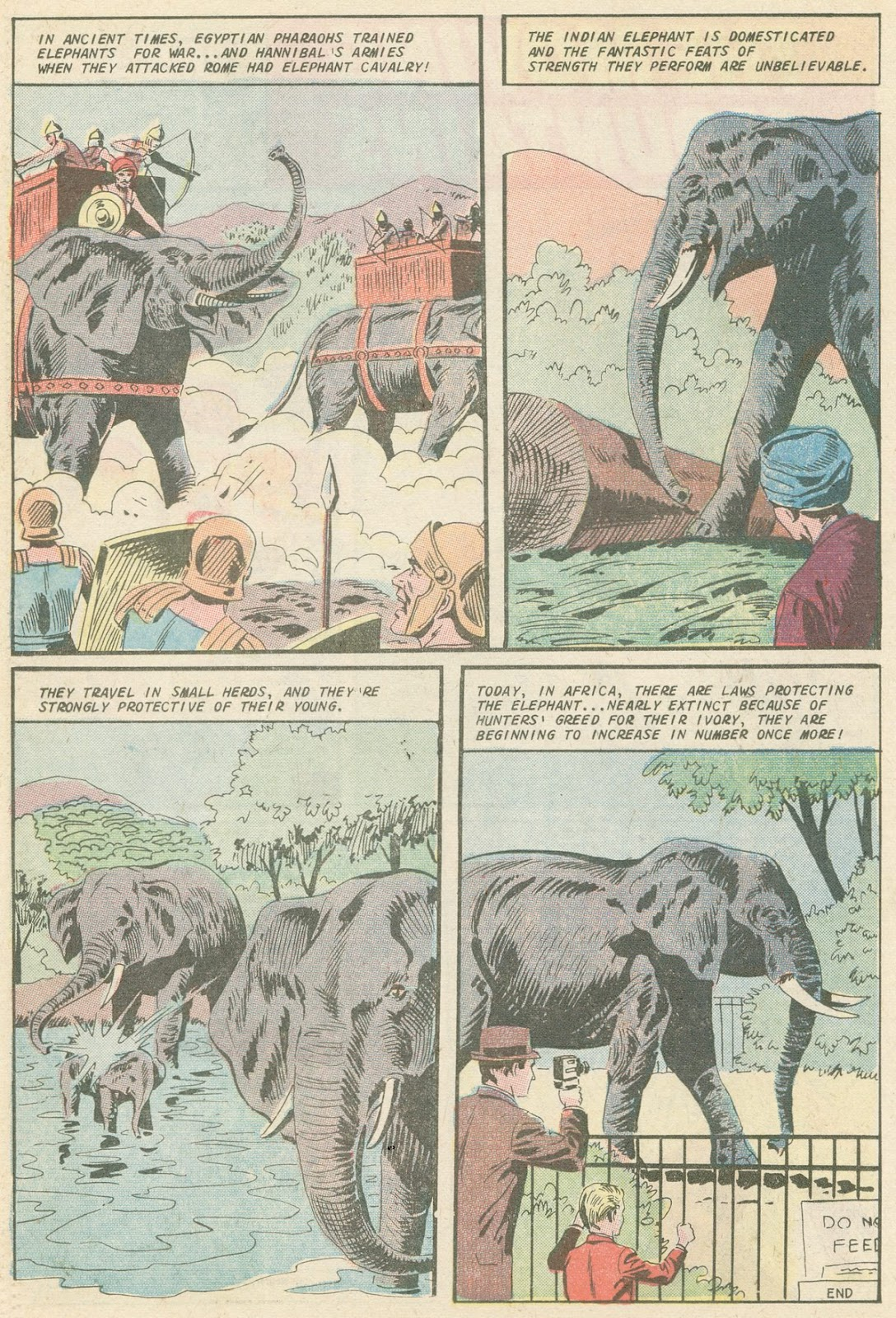 The Phantom (1969) issue 31 - Page 19