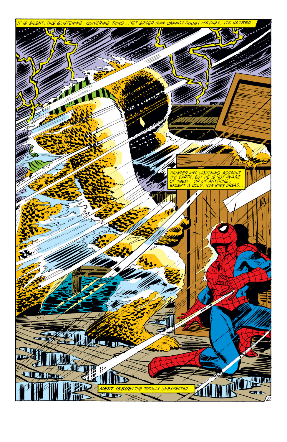 The Amazing Spider-Man (1963) 217 Page 22