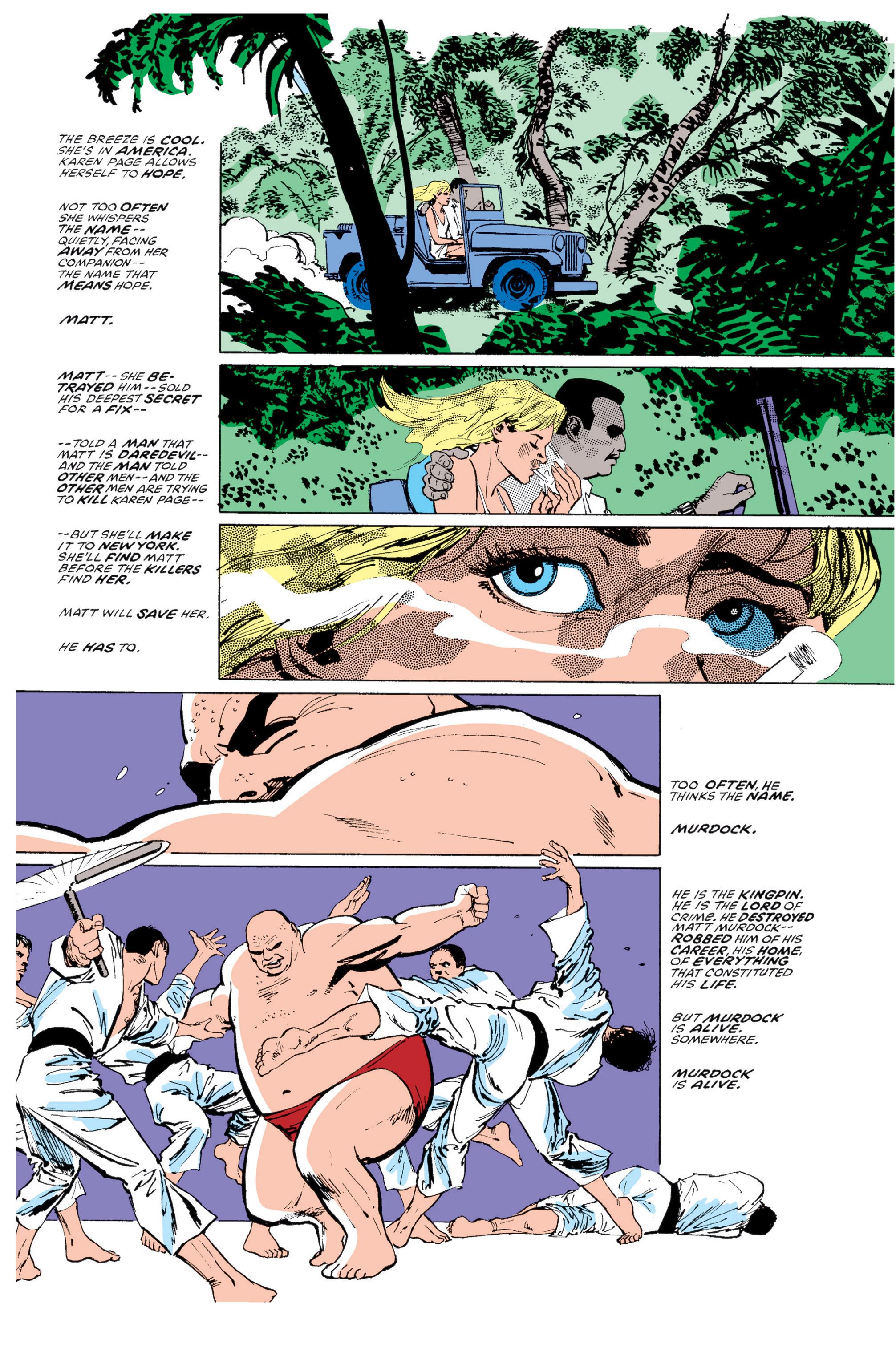 Read online Daredevil: Born Again comic -  Issue # Full - 102