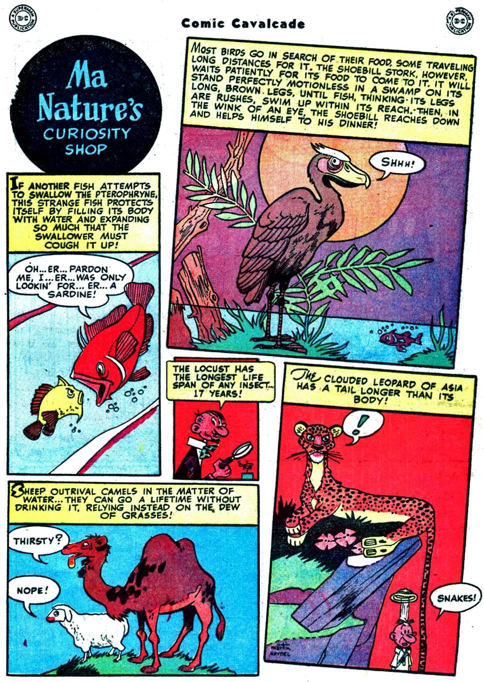 Comic Cavalcade issue 32 - Page 65