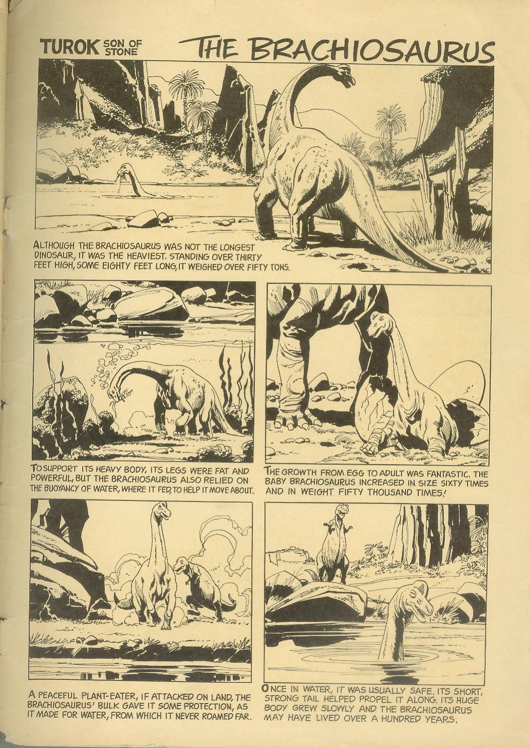 Read online Turok, Son of Stone comic -  Issue #30 - 35