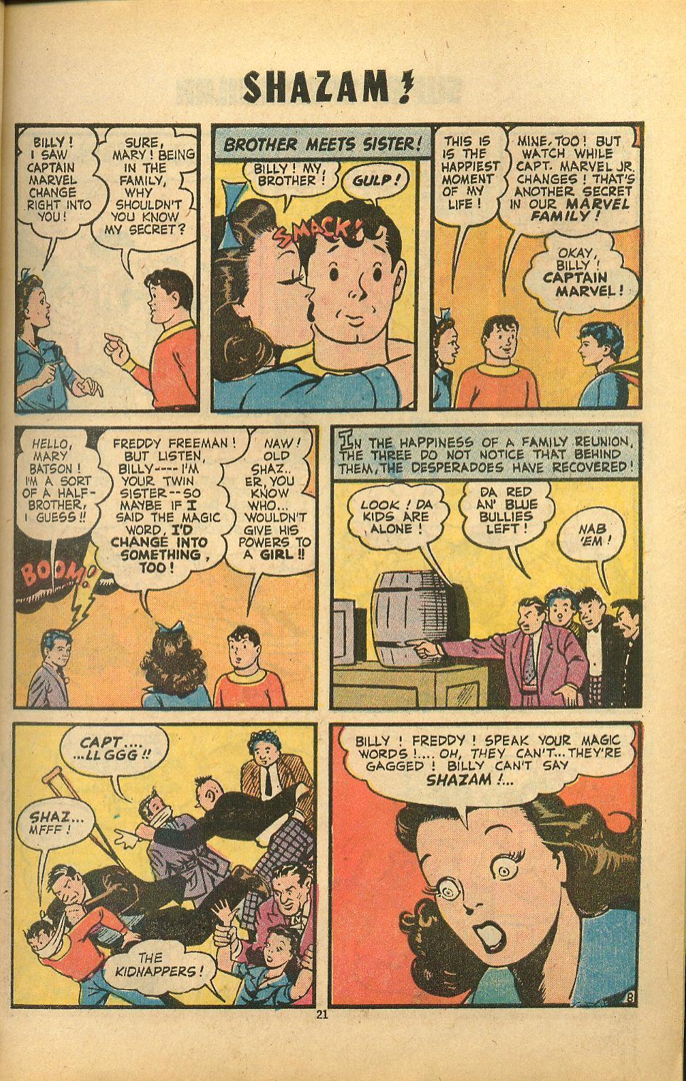 Read online Shazam! (1973) comic -  Issue #8 - 21