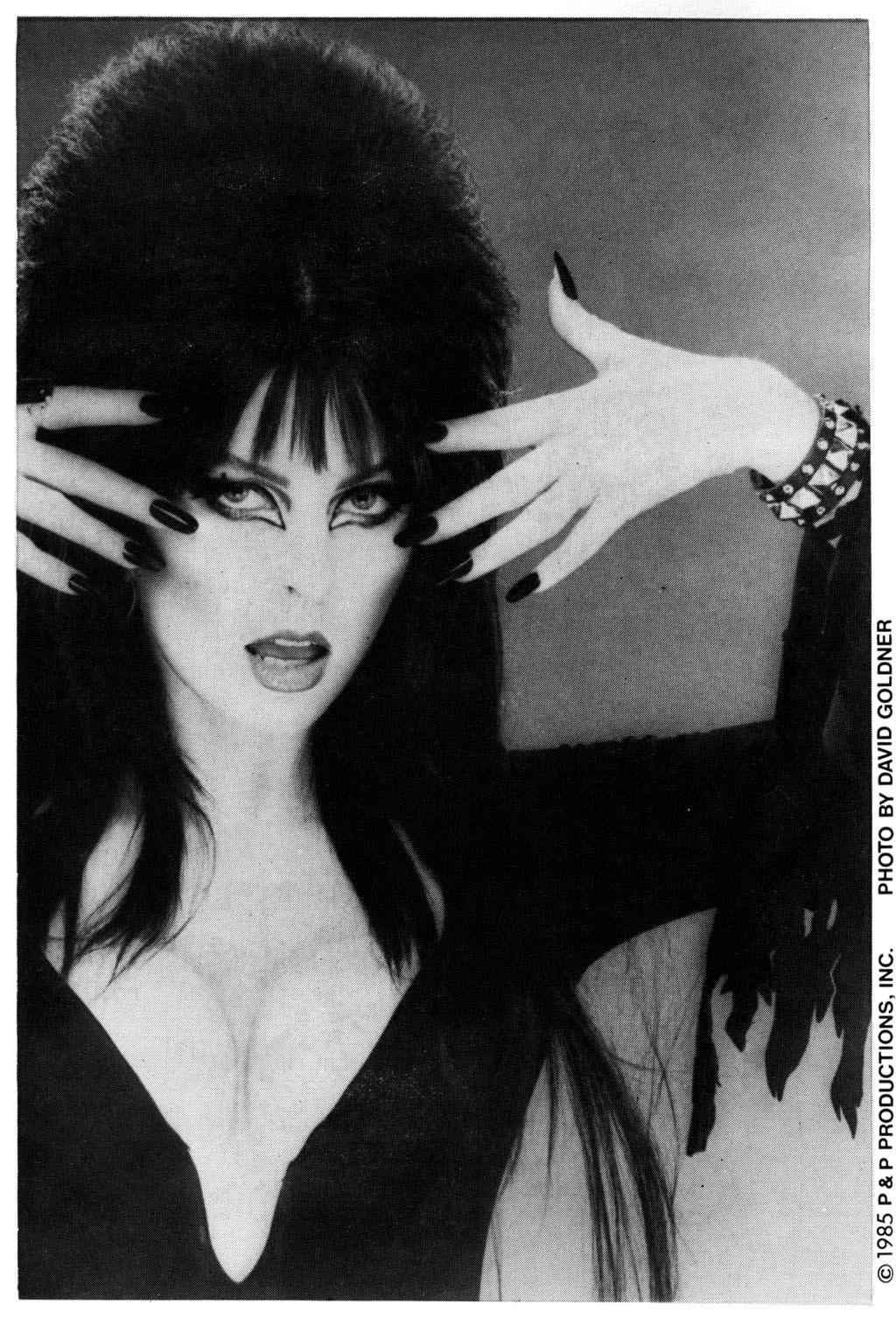 Elvira's House of Mystery Issue #1 #2 - English 2