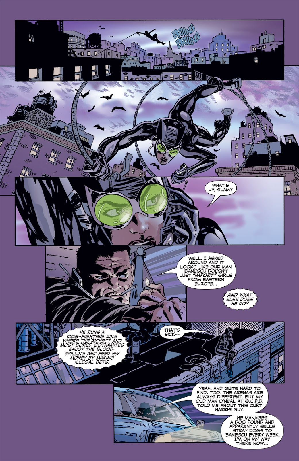 Catwoman (2002) Issue #41 #41 - English 18