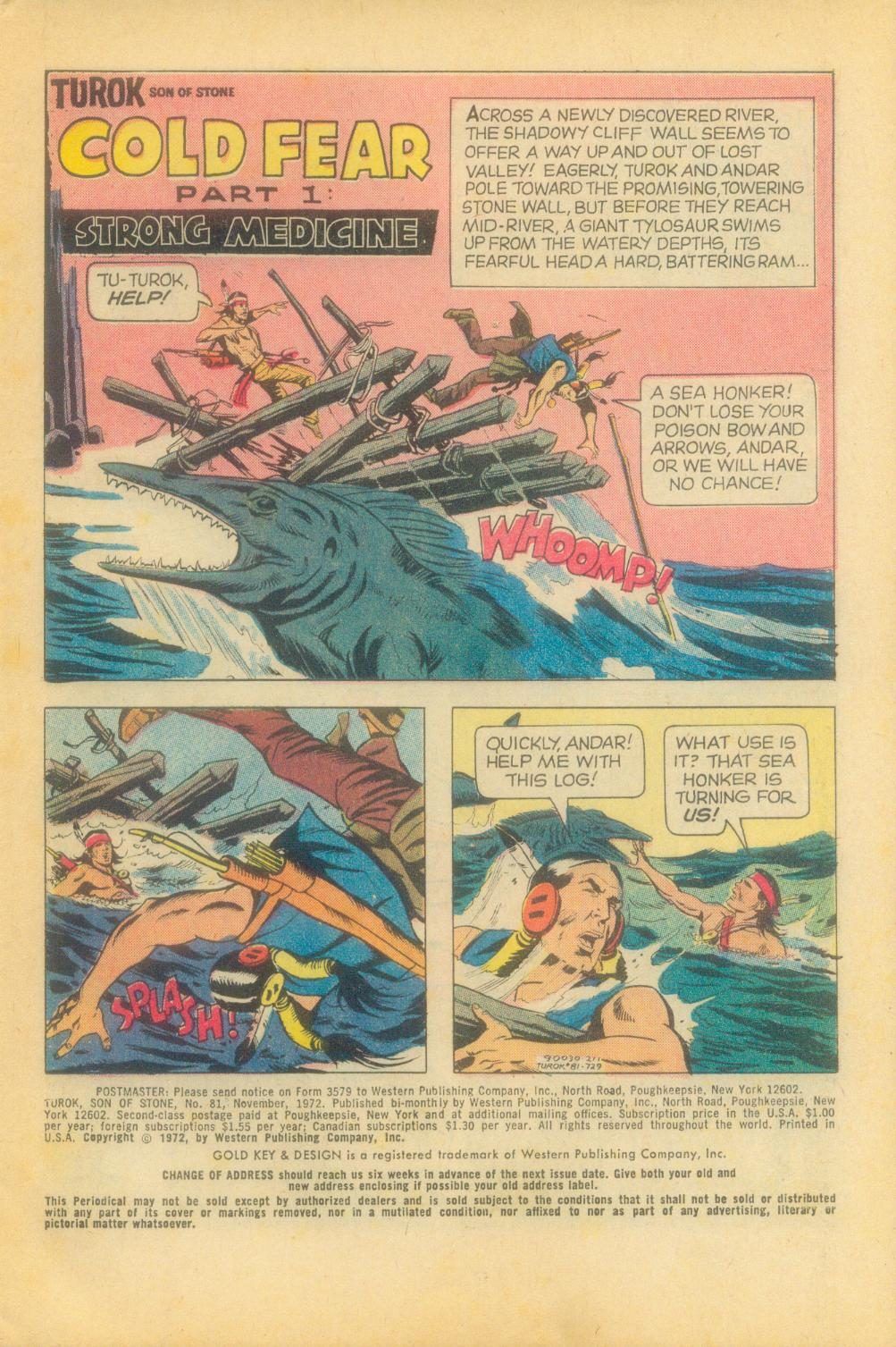 Read online Turok, Son of Stone comic -  Issue #81 - 3