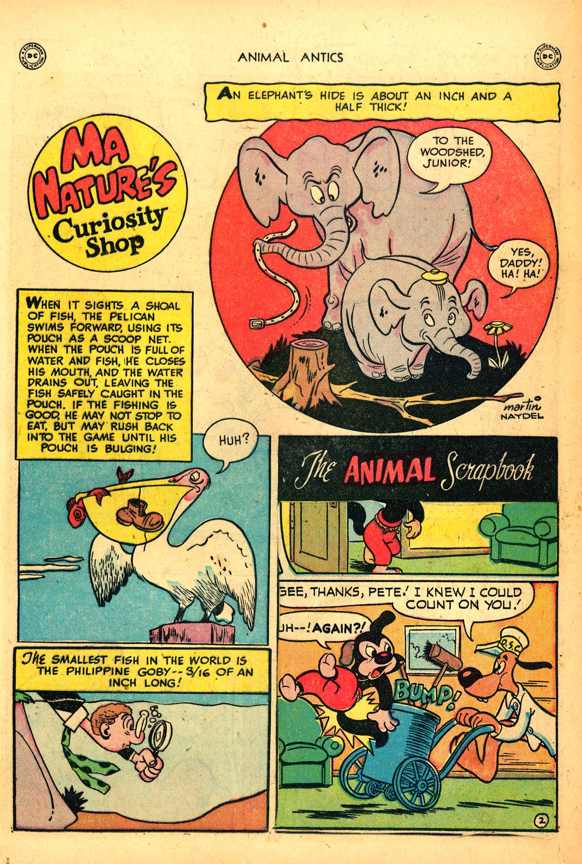 Read online Animal Antics comic -  Issue #21 - 19