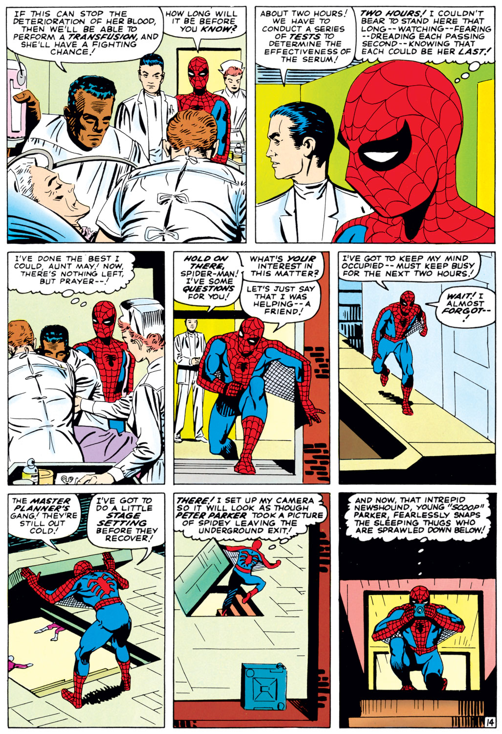 The Amazing Spider-Man (1963) 33 Page 14