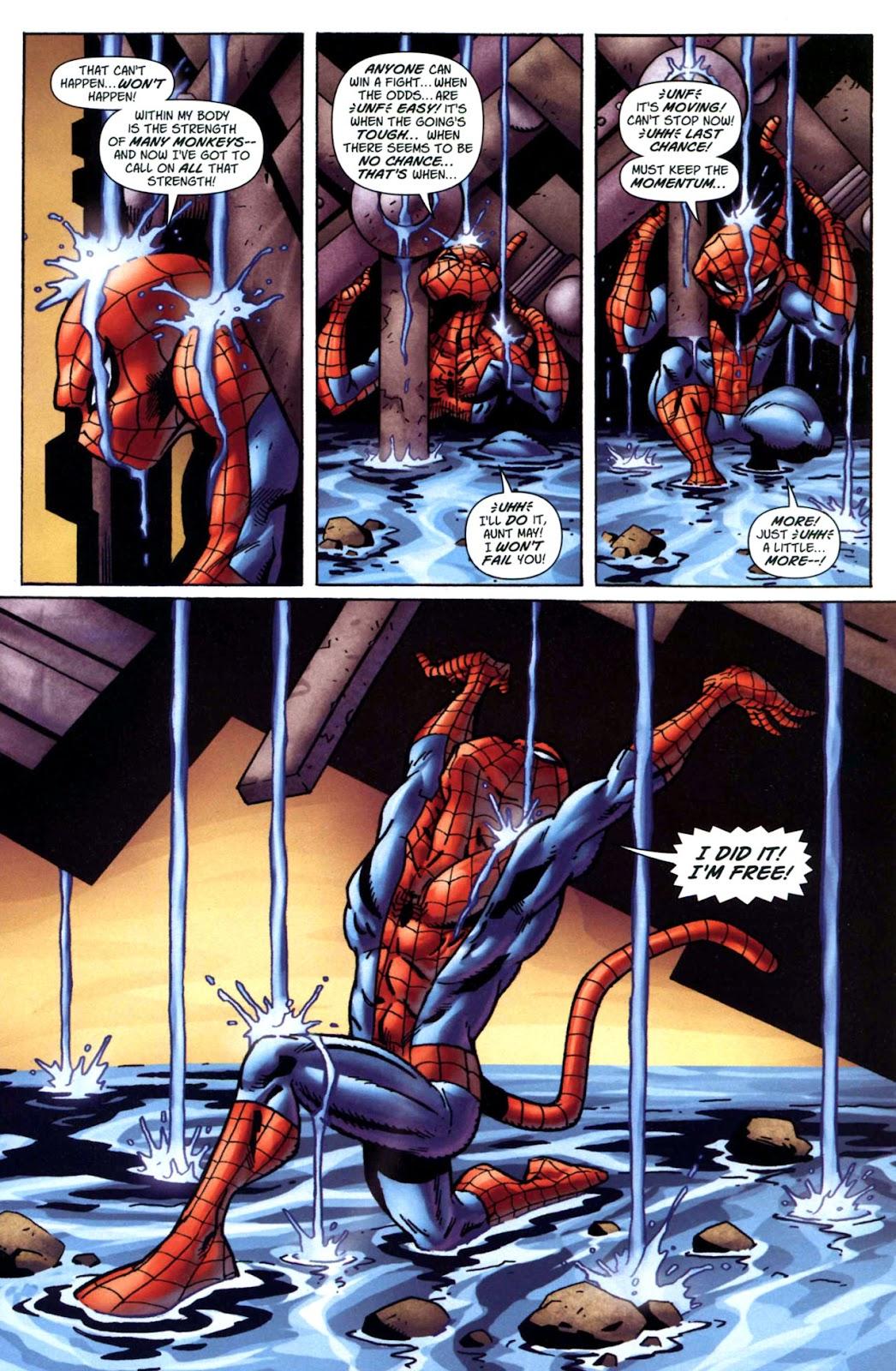 Amazing Spider-Man Family Issue #1 #1 - English 28