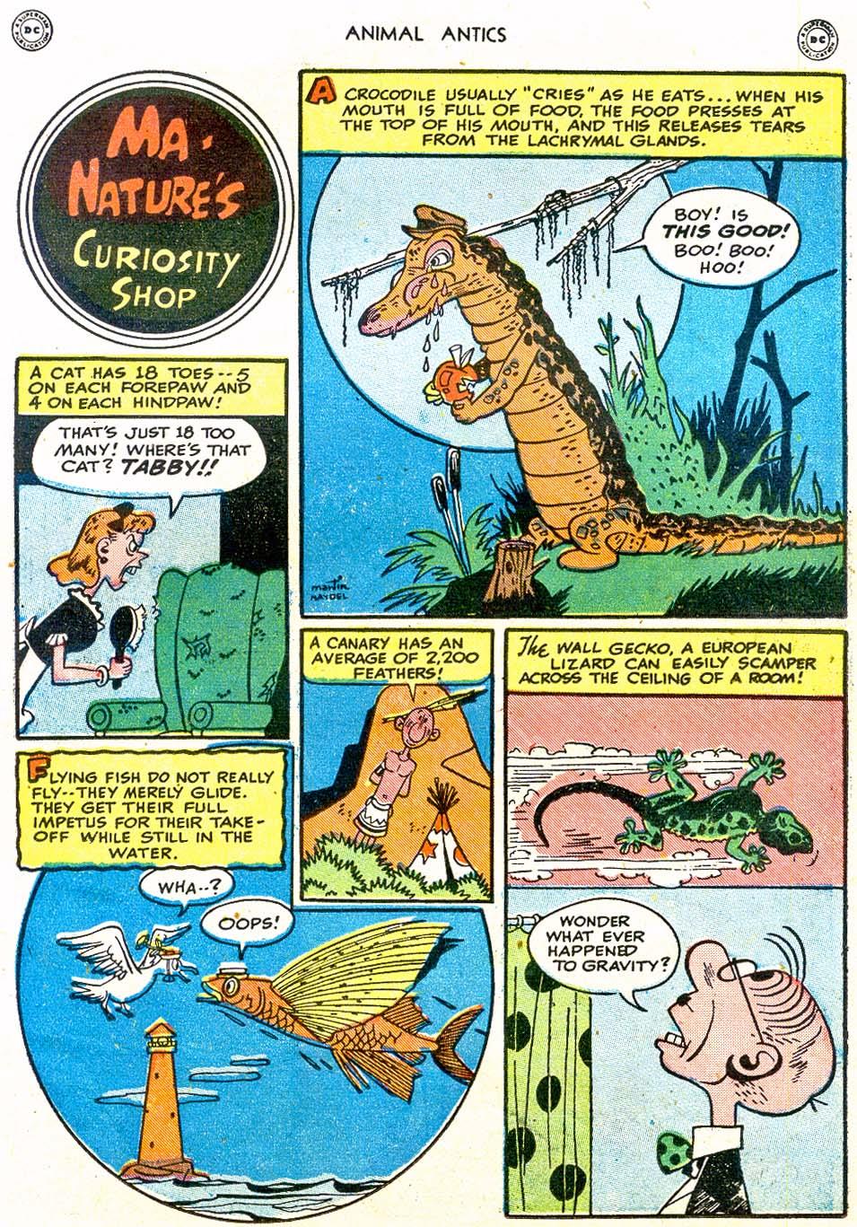 Read online Animal Antics comic -  Issue #17 - 33