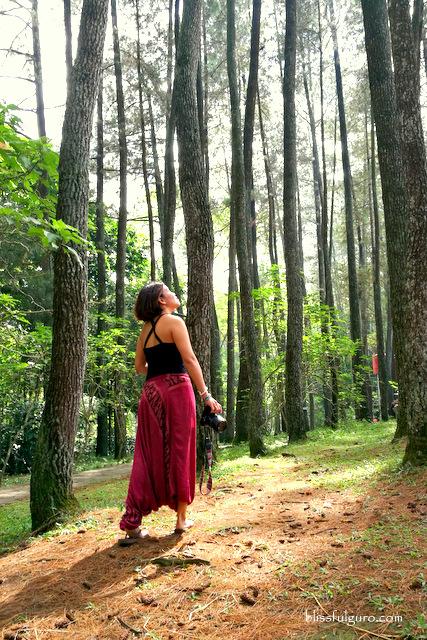 Forest Park Bandung