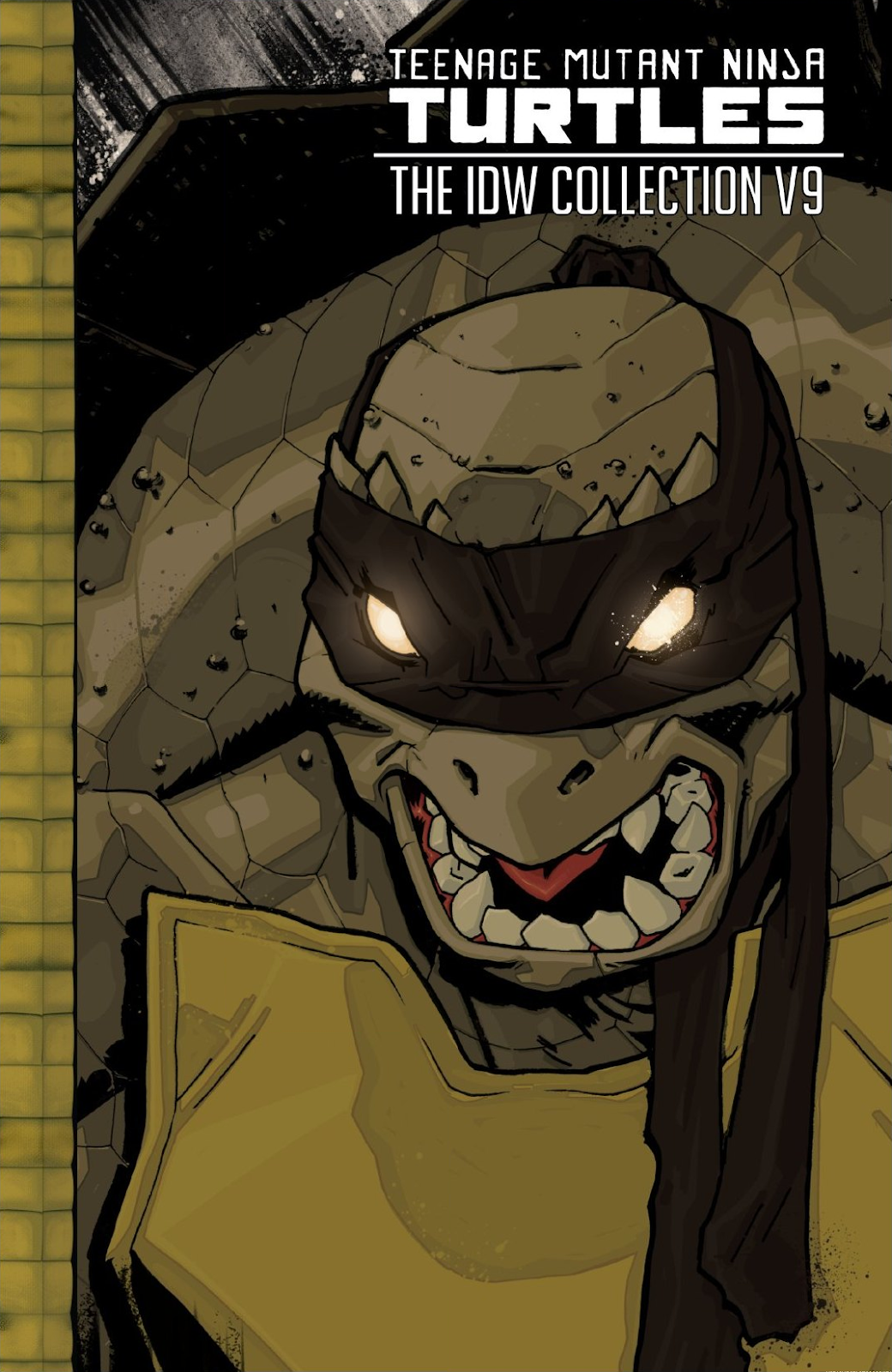 Read online Teenage Mutant Ninja Turtles: The IDW Collection comic -  Issue # TPB 9 (Part 1) - 1