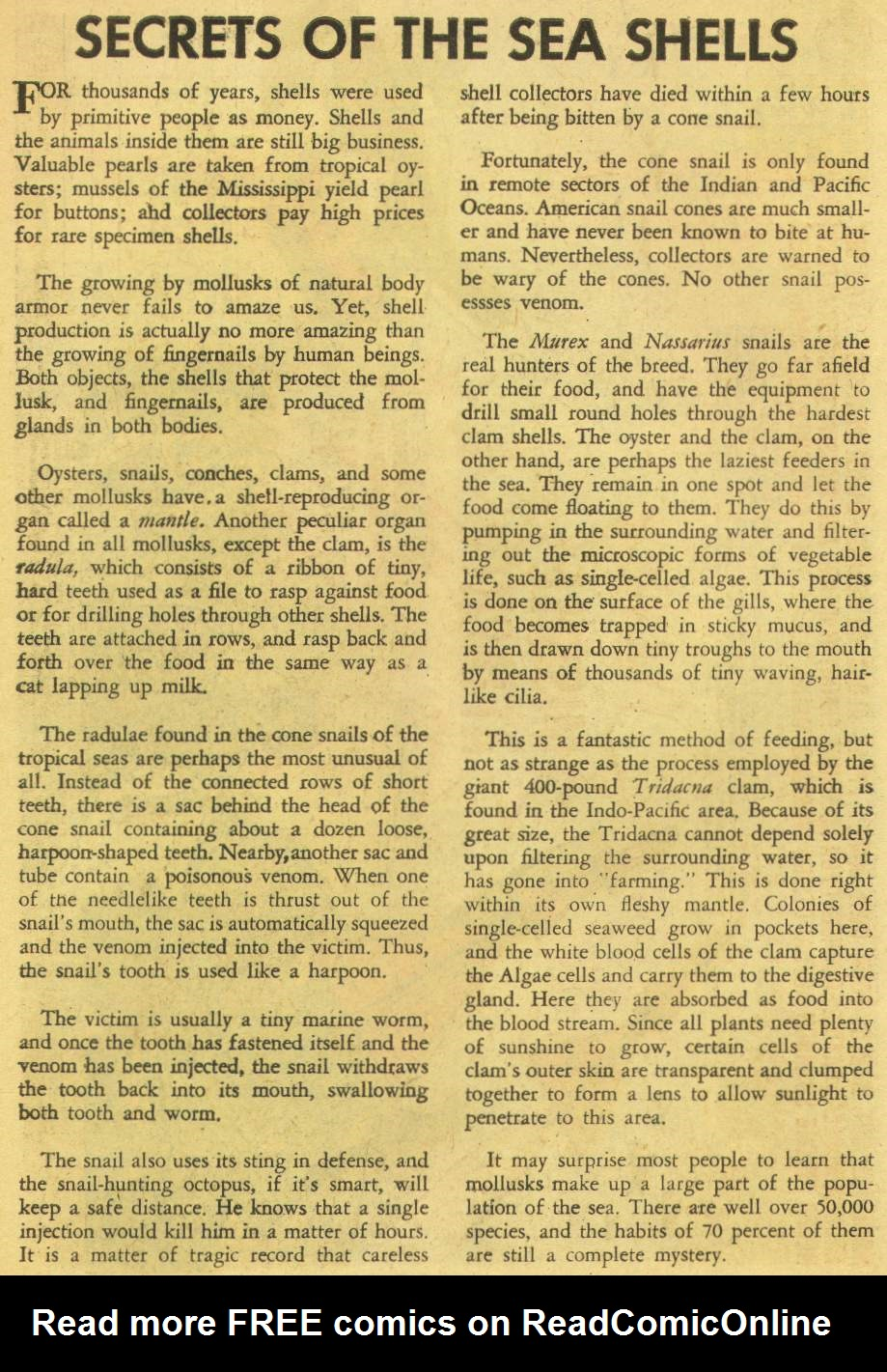 Read online Aquaman (1962) comic -  Issue #8 - 22