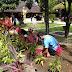 Kerja Bakti Membersihkan Gereja dan Lingkungan Sekitarnya