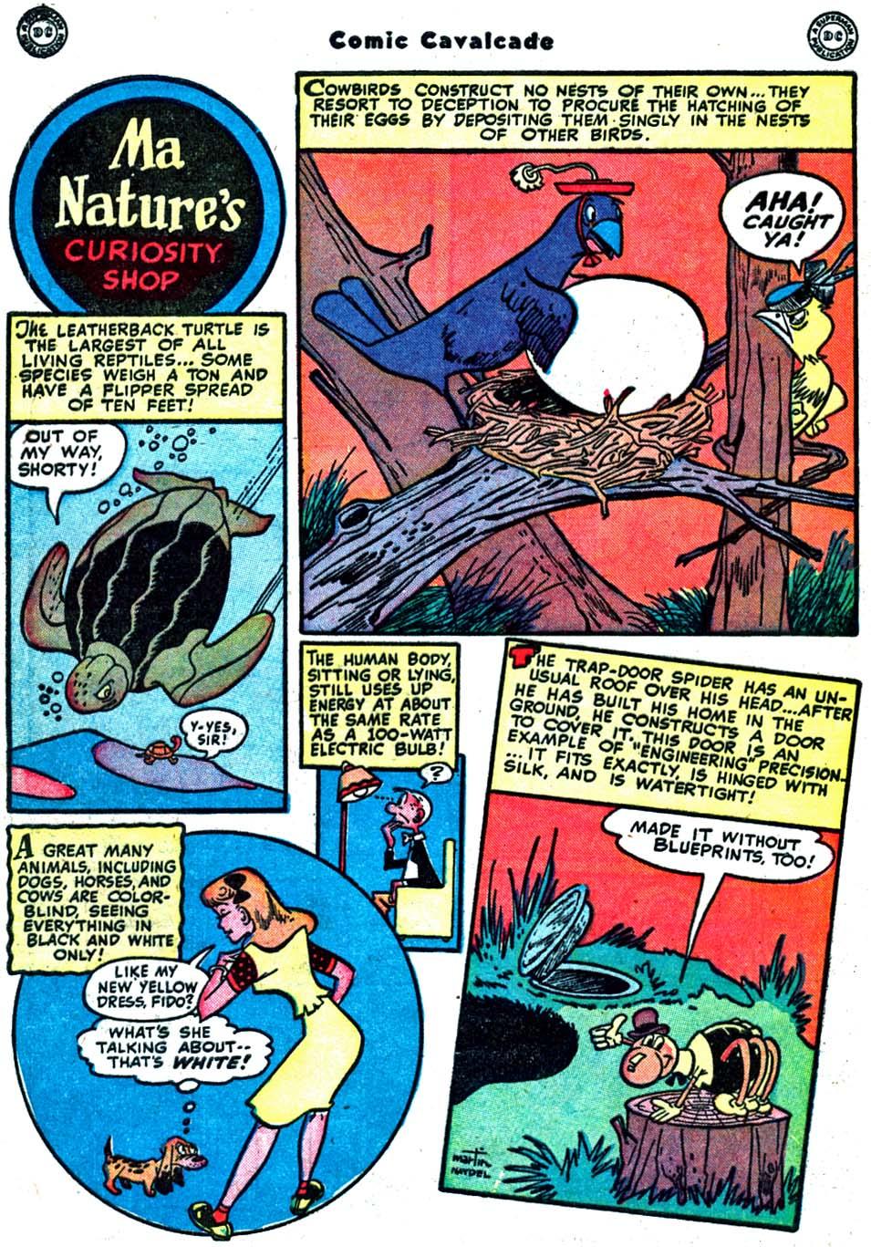 Comic Cavalcade issue 32 - Page 48