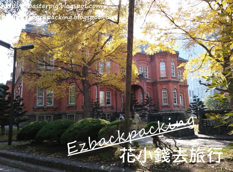 北海道廳舊本廳舍和銀杏