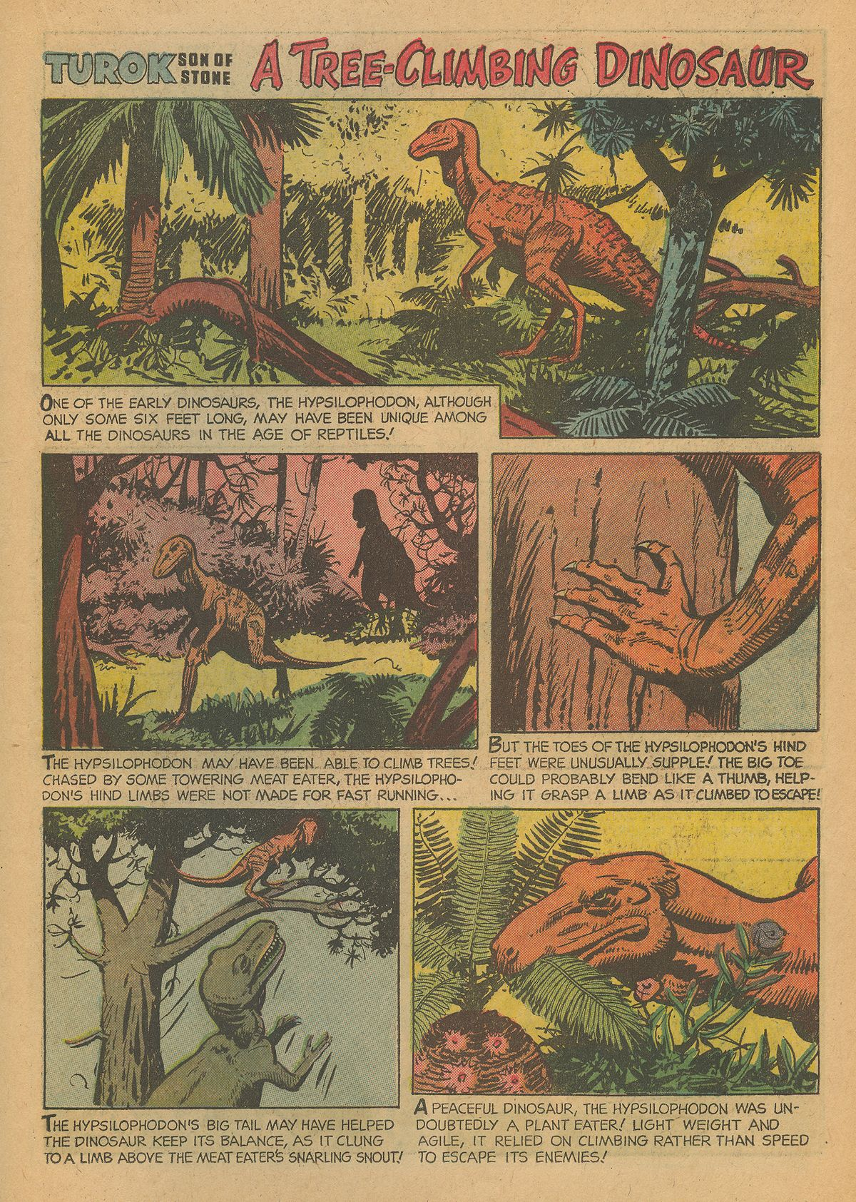 Read online Turok, Son of Stone comic -  Issue #43 - 19