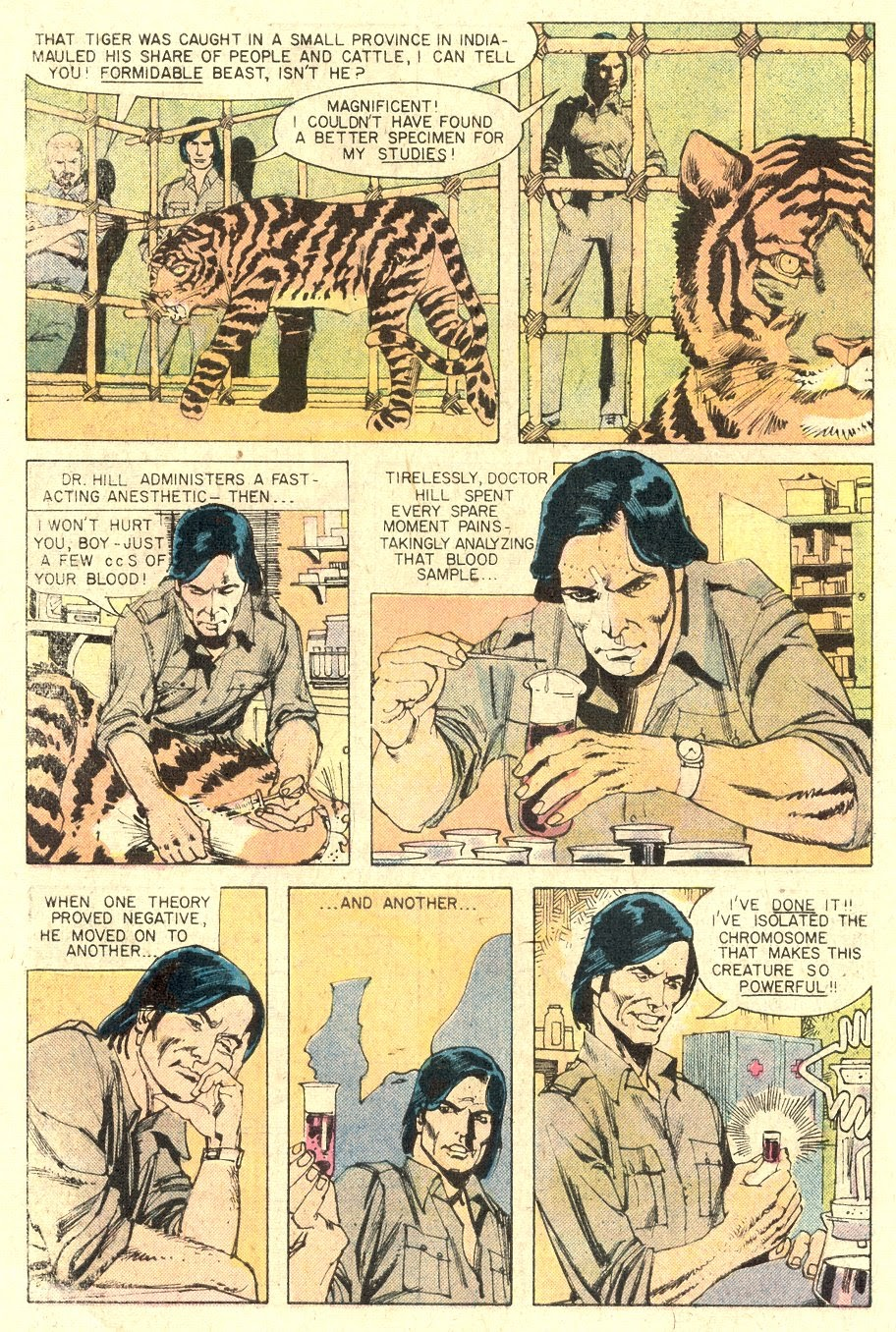 Read online Tiger-Man comic -  Issue #1 - 6
