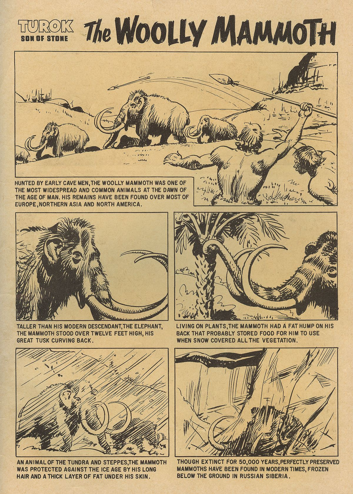 Read online Turok, Son of Stone comic -  Issue #22 - 35