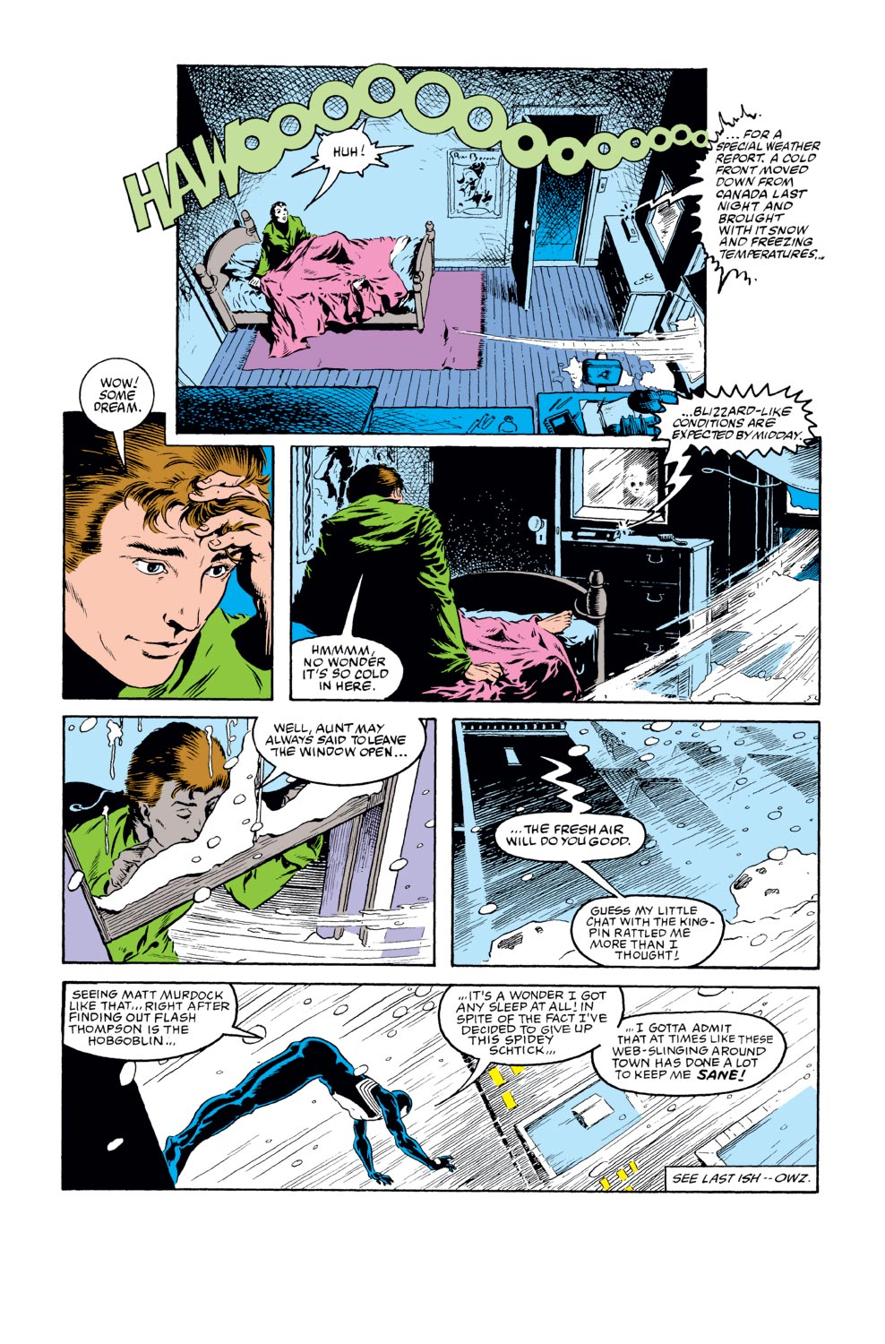 The Amazing Spider-Man (1963) 277 Page 13
