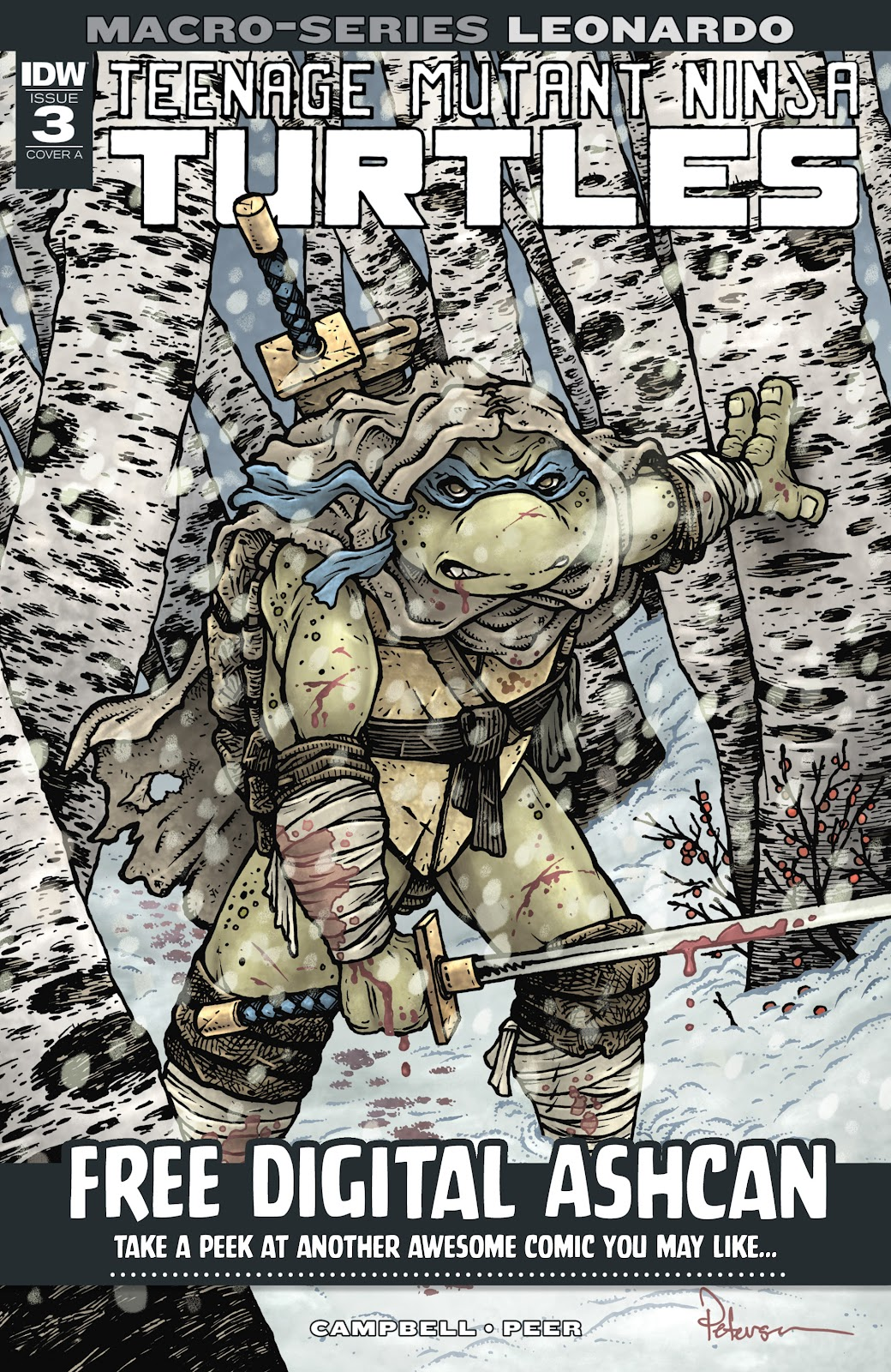 Read online Teenage Mutant Ninja Turtles (2011) comic -  Issue #101 - 29