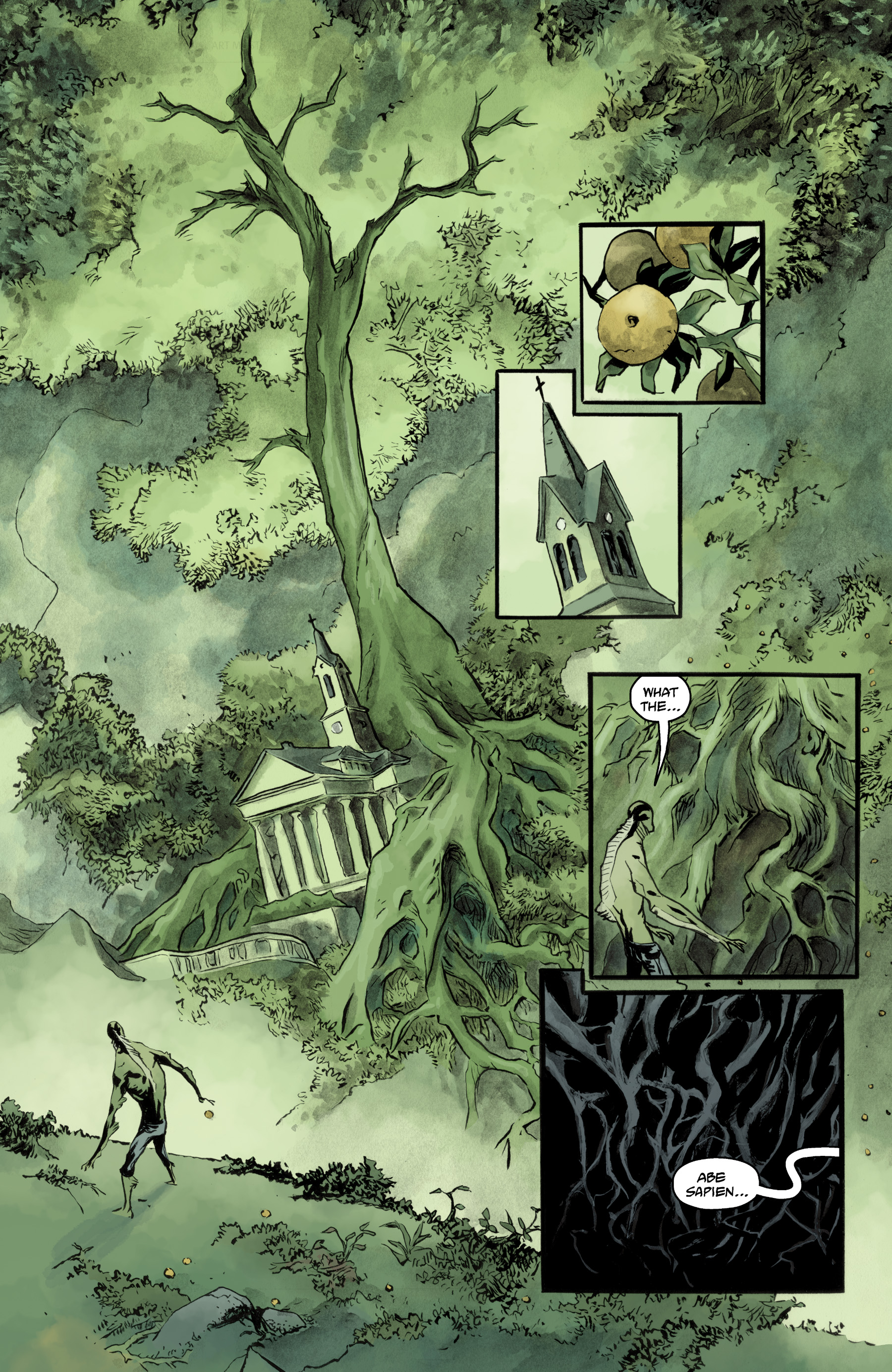 Read online Abe Sapien comic -  Issue #35 - 13