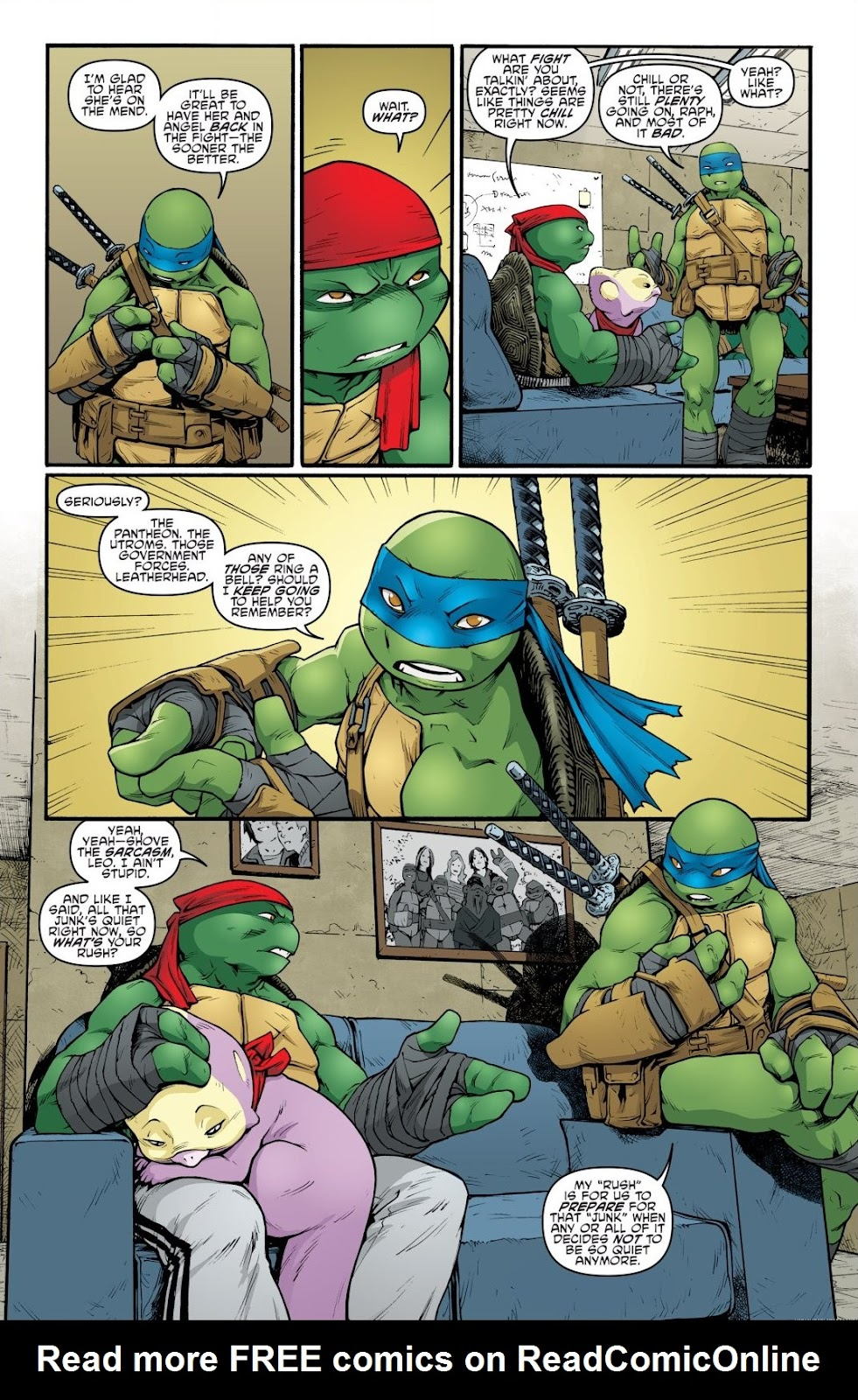 Read online Teenage Mutant Ninja Turtles: The IDW Collection comic -  Issue # TPB 9 (Part 1) - 14