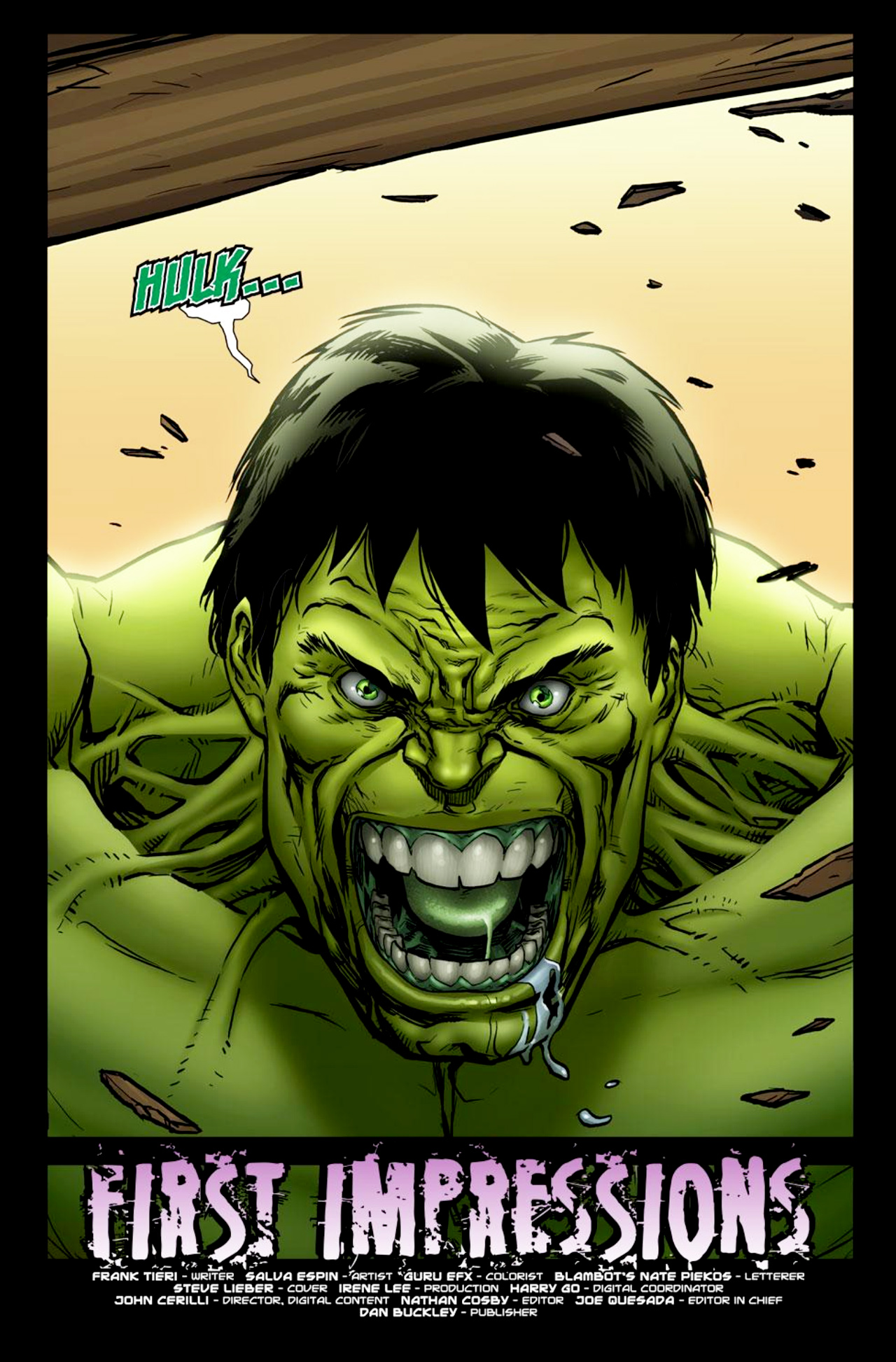 Read online Incredible Hulk: The Fury Files comic -  Issue #1 - 2