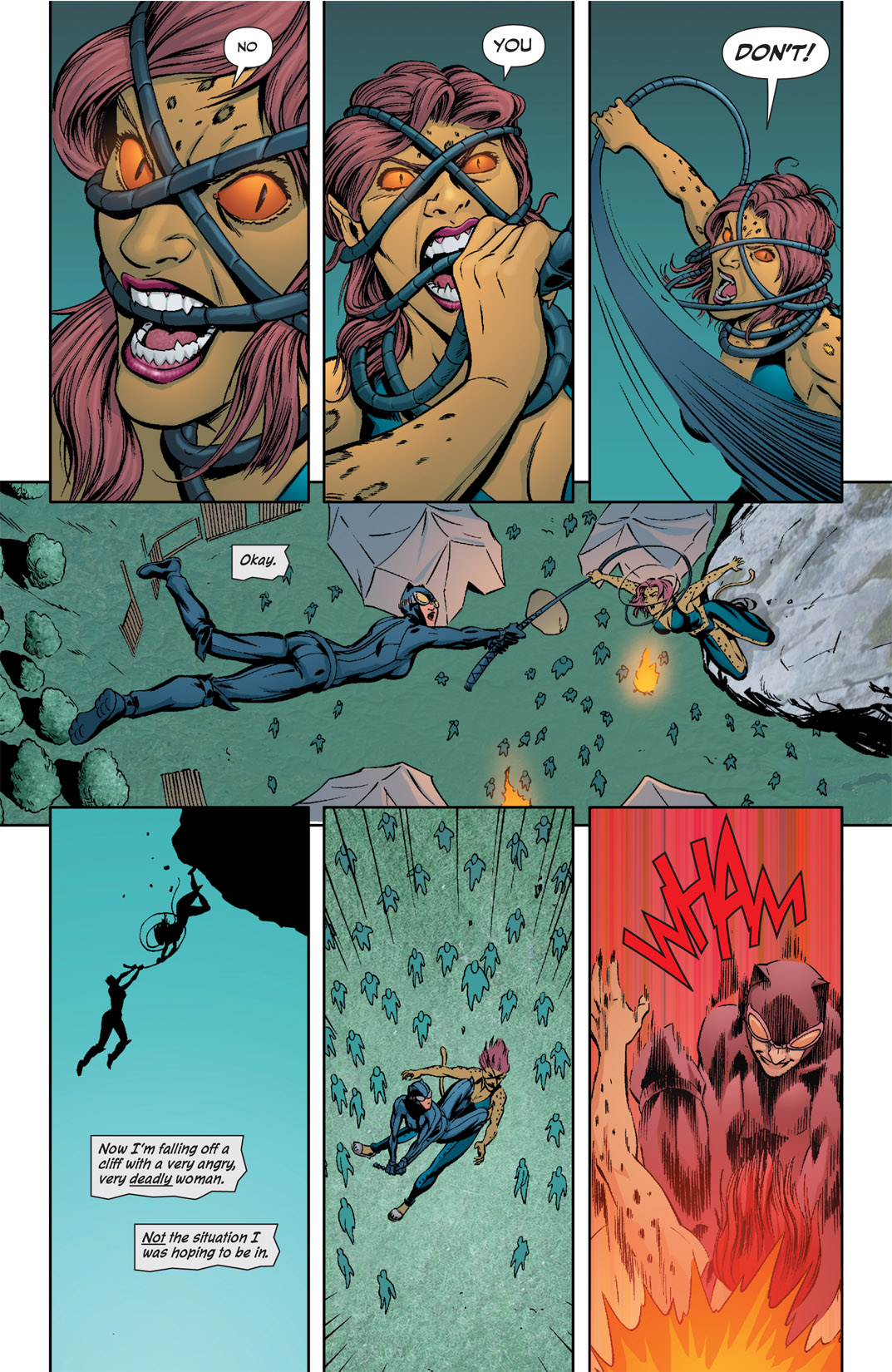 Catwoman (2002) #78 #78 - English 19