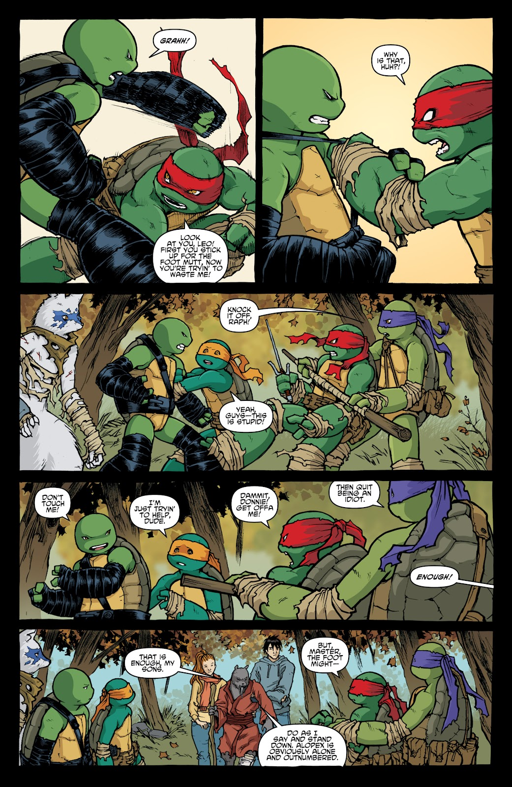 Read online Teenage Mutant Ninja Turtles: The IDW Collection comic -  Issue # TPB 4 (Part 1) - 17