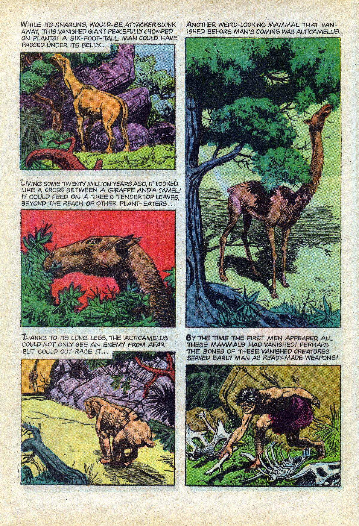 Read online Turok, Son of Stone comic -  Issue #66 - 16