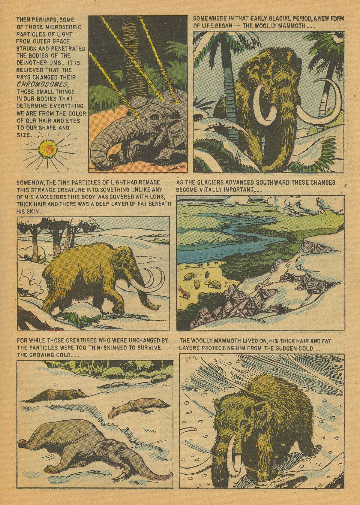 Read online Turok, Son of Stone comic -  Issue #14 - 19