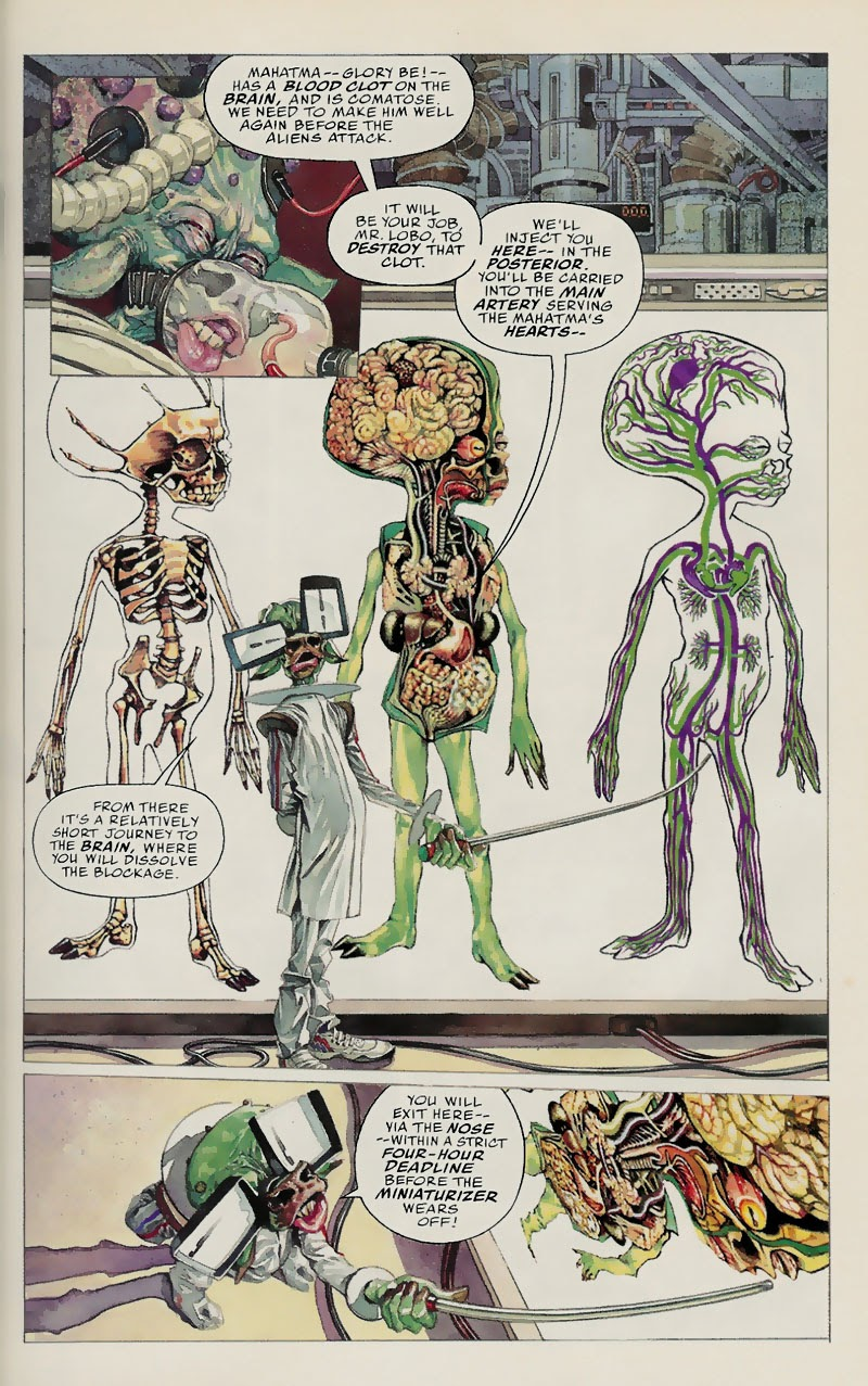 Lobo: Fragtastic Voyage issue Full - Page 8