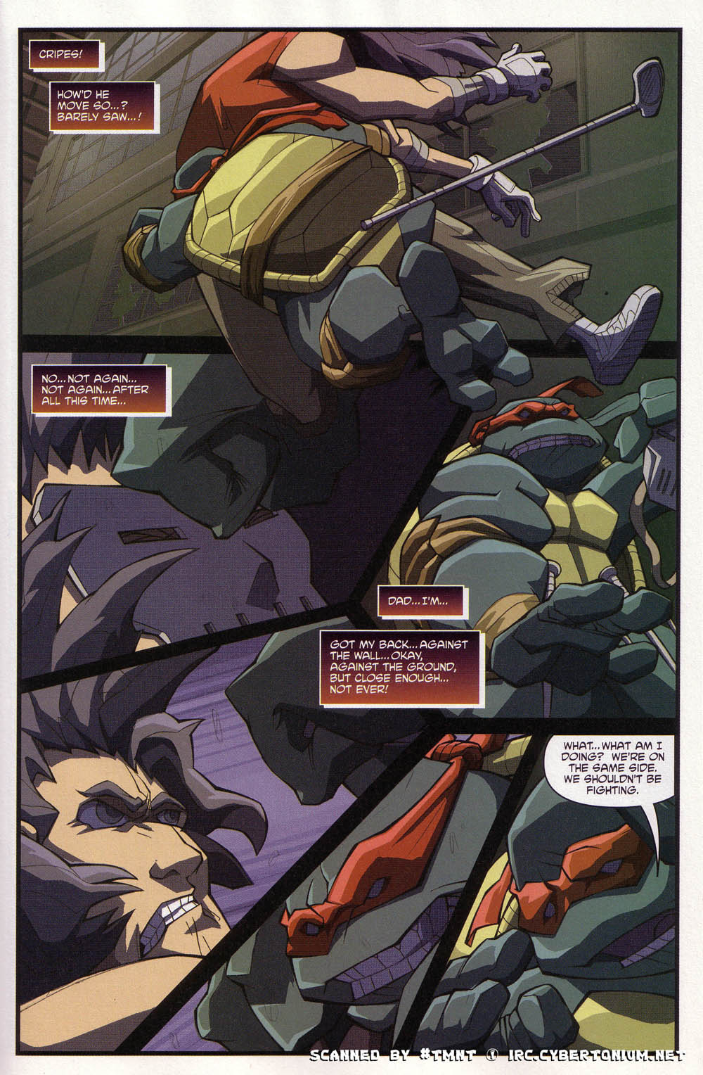 Teenage Mutant Ninja Turtles (2003) issue 4 - Page 17