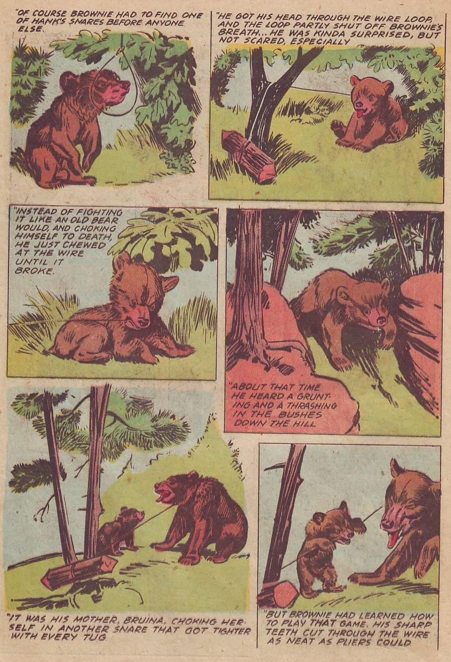 Read online Animal Comics comic -  Issue #28 - 30